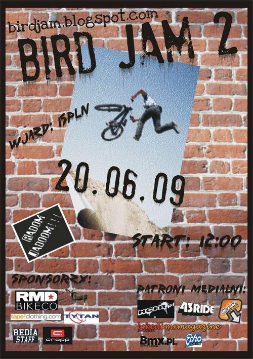 Bird Jam 2